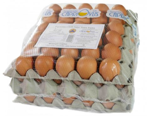 Friss tojás (fertőtlenített héjű) [90db]